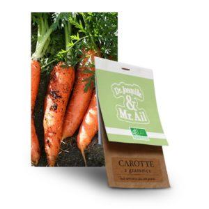graine carotte bio