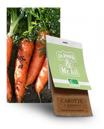 graine carotte bio - Dr. Jonquille & Mr. Ail