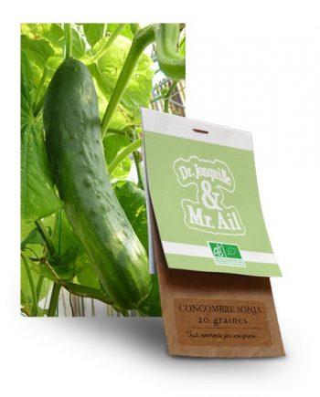 graine concombre sonja bio - Dr. Jonquille & Mr. Ail