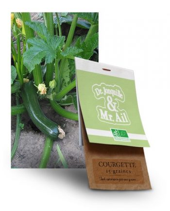 graine courgette bio - Dr. Jonquille & Mr. Ail