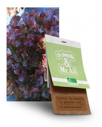 graine feuille de chêne rouge bio - Dr. Jonquille & Mr. Ail