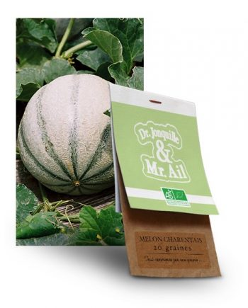 graine de melon charentais bio - Dr. Jonquille & Mr. Ail