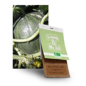 graine de melon petit gris bio - Dr. Jonquille & Mr. Ail