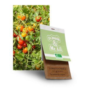 Graine de tomate cerise Bio - Dr. Jonquille & Mr. Ail