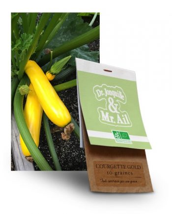 graine courgette gold bio - Dr. Jonquille & Mr. Ail