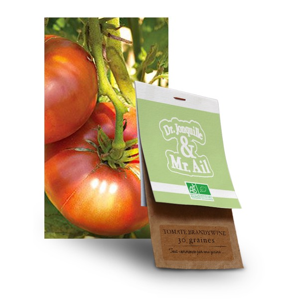 Graines Tomate Brandywine Bio - Dr. Jonquille & Mr. Ail