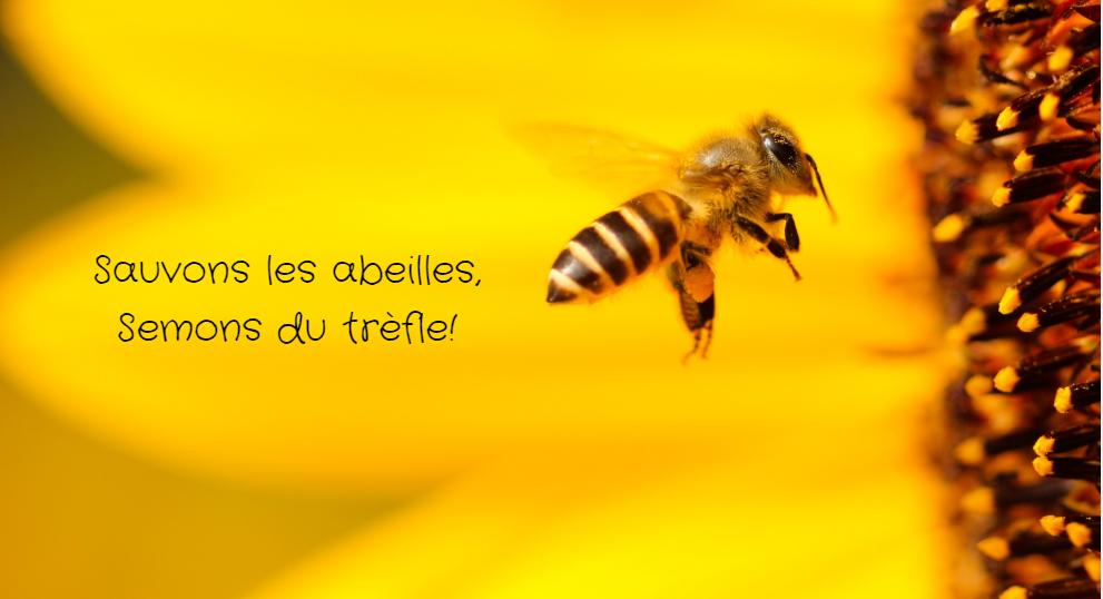 Sauver les abeilles - Dr. Jonquille & Mr. Ail