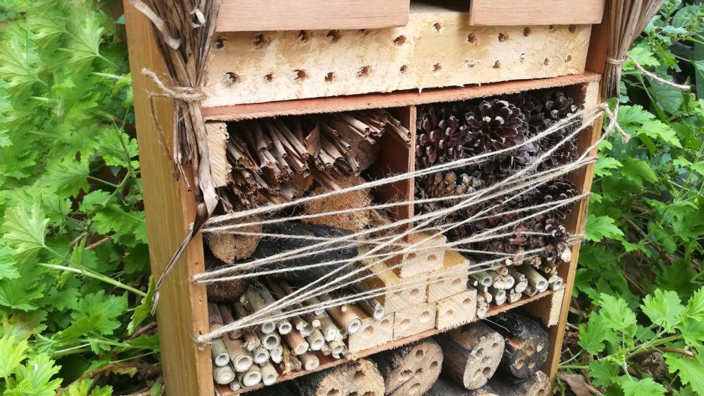Pourquoi et comment fabriquer un Hôtel à insectes?