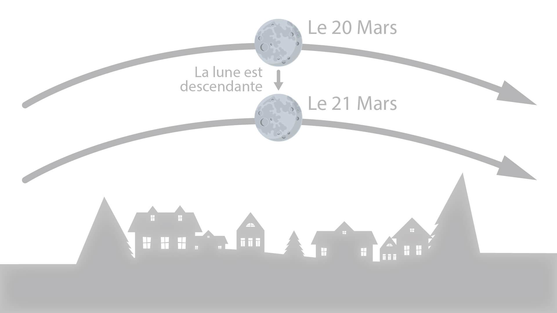 Jardiner avec la Lune - Lune Montant et Descendante - Blog DJMA