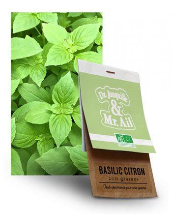 Graine Basilic Citron BIO