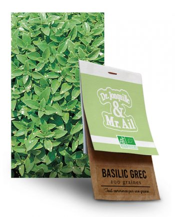 Graine Basilic Grec BIO