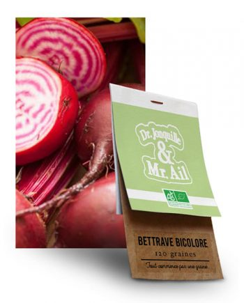 Graine Betterave Bicolore Chioggia BIO
