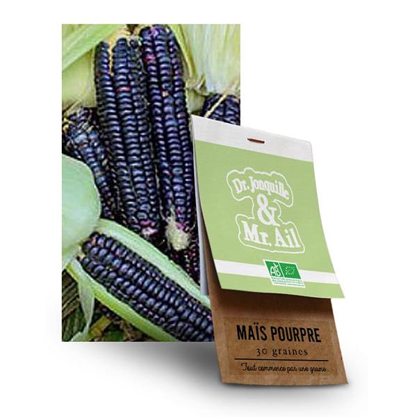 Graine Mais Pop Corn Noir BIO