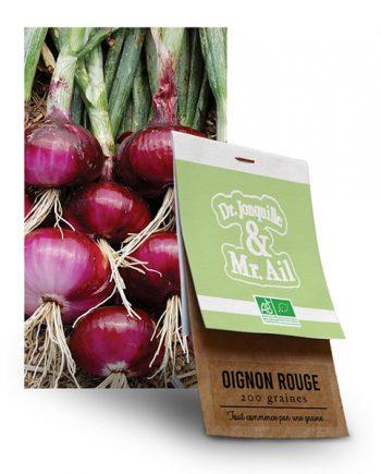 Graine Oignon Rouge BIO