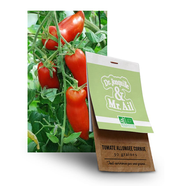 Graine Tomate Andine Cornue BIO
