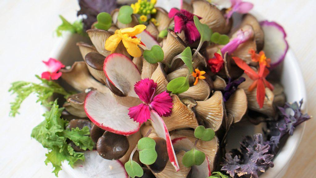 Quelles fleurs se mangent et comment les consommer