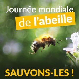 Comment sauver les abeilles ?