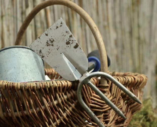 Les 6 outils de jardinage indispensables pour débuter au potager