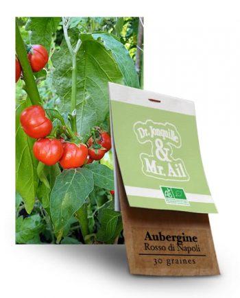 Graines bio - Aubergine Rosso di Napoli - Dr. Jonquille & Mr. Ail