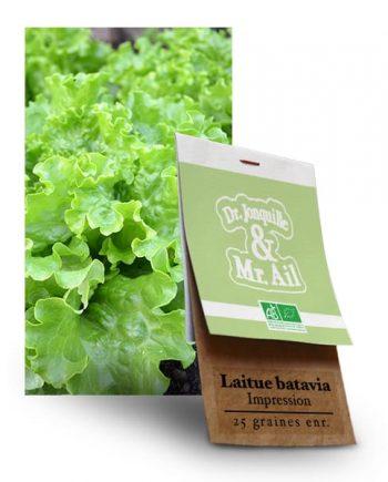 Graines Bio Laitue Batavia Impression