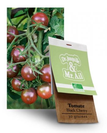 Graines bio Tomate Black Cherry - Dr. Jonquille & Mr. Ail