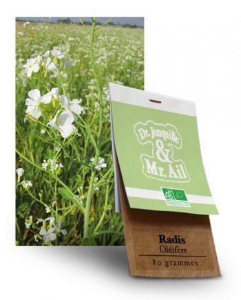 Graines Bio et Reproductibles Radis Oléifère