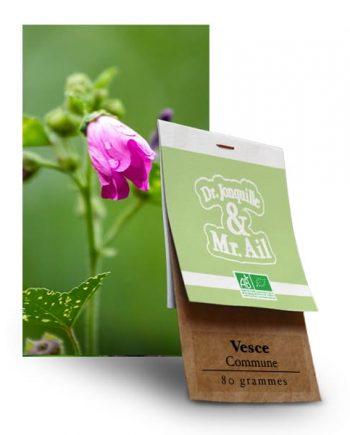 Graines Bio et Reproductibles Vesce Commune