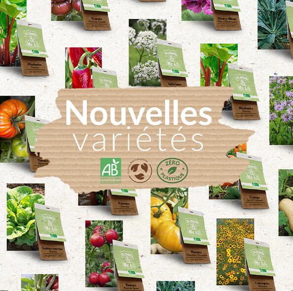 les nouvelles variétés de semences bio - Dr. Jonquille & Mr. Ail