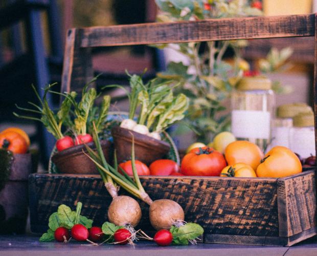 Les 10 légumes pour débuter au potager - Blog - Dr. Jonquille & Mr. Ail