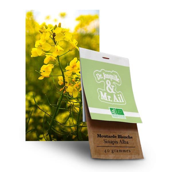 Graines Bio et Reproductibles Moutarde Blanche